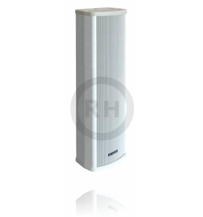 Głośnik 100V CS-24